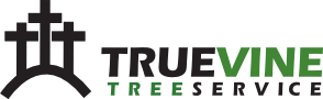 logos/true_vine_tree_service_1_1541515677.png